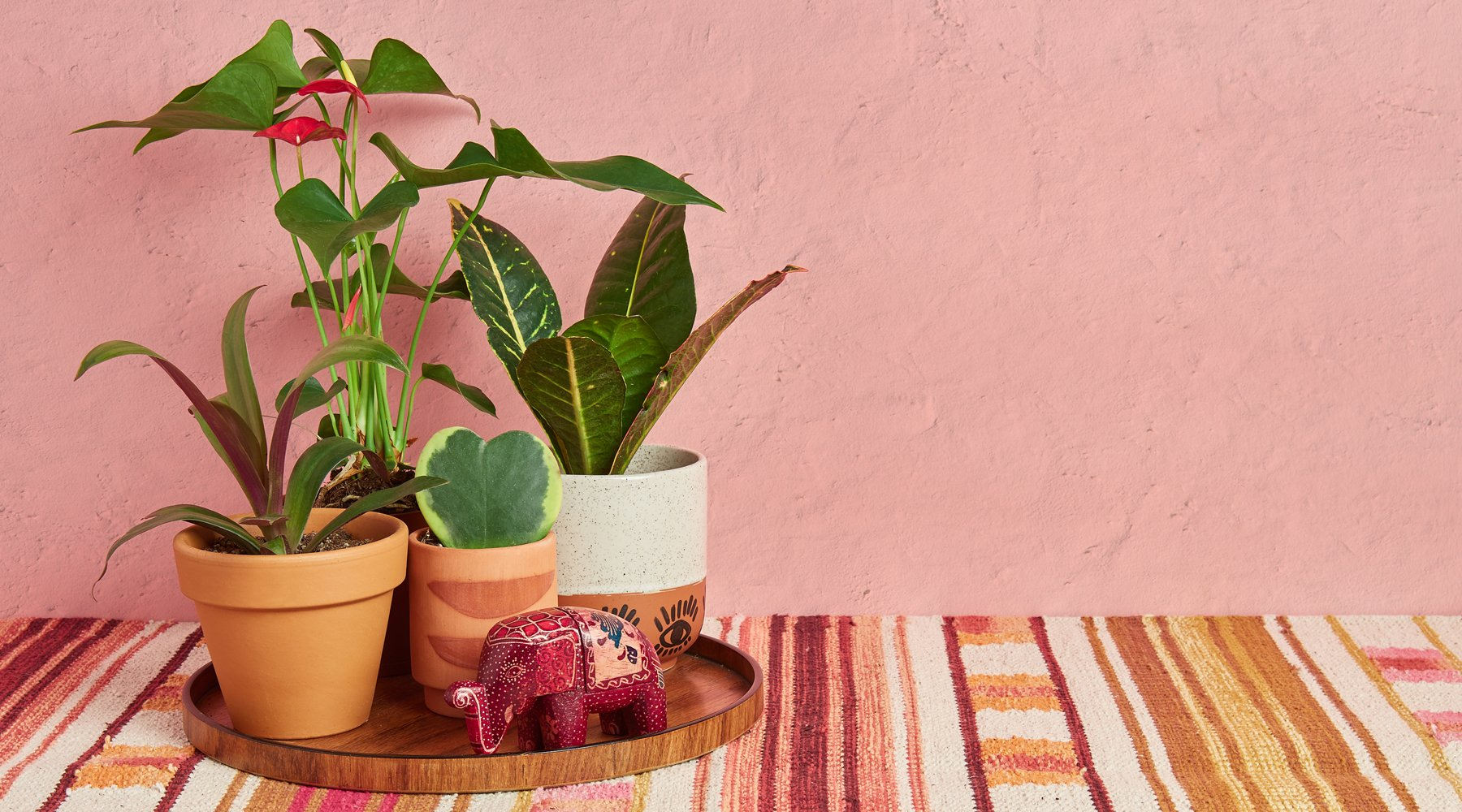 Must have accessories for Houseplant lovers.